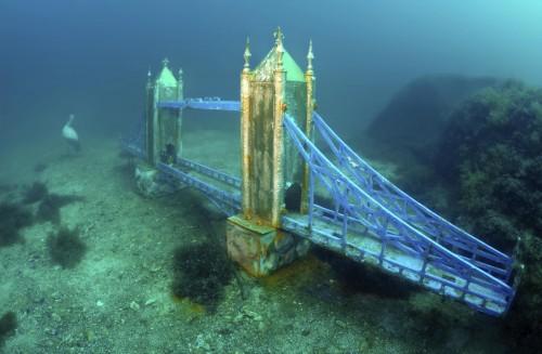 Подводный Крым в августе