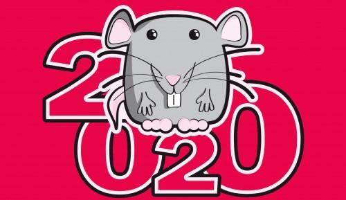 Новый 2020 год крысы